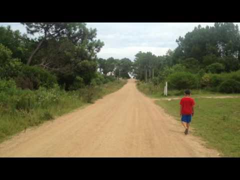 Camino a Playa de Punta Colorada