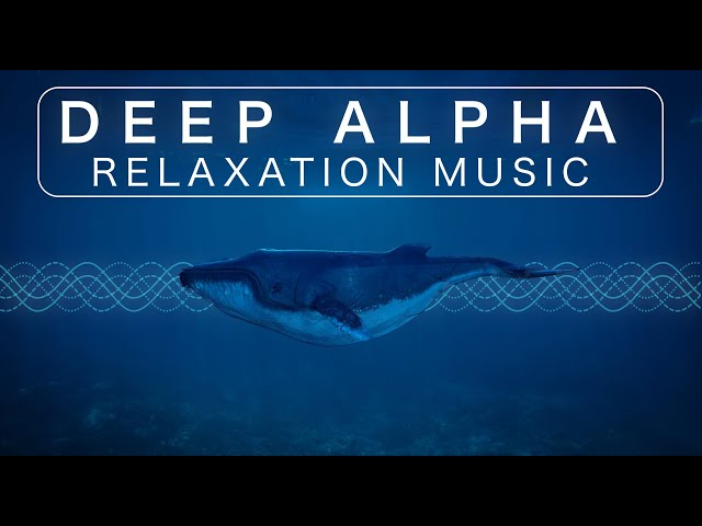 Underwater Meditation Music with Whale Sounds [Binaural Beats Included]