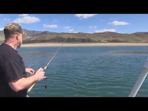 Trout and Kokanee Fishing on Lake Roosevelt