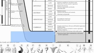 Page 8-Geologic History-Hommocks Earth Science Department