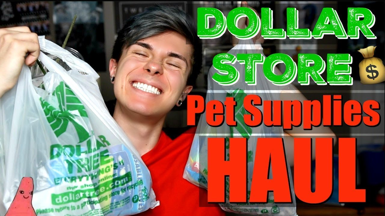 dollar-store-pet-supplies-haul