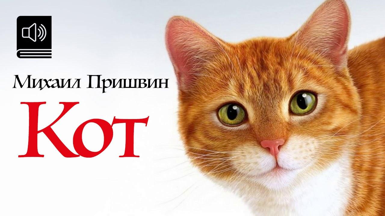 пришвин кот картинки обыкновенная способна