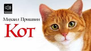 Кот Пришвина (аудиосказка)