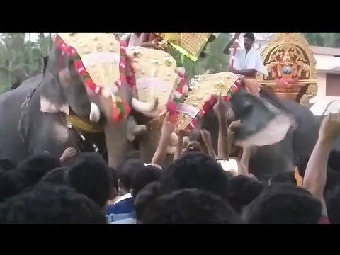 ELEPHANT ATTACK MAHOUT IN KERALA - YouTube  Kerala Elephant Attack Youtube
