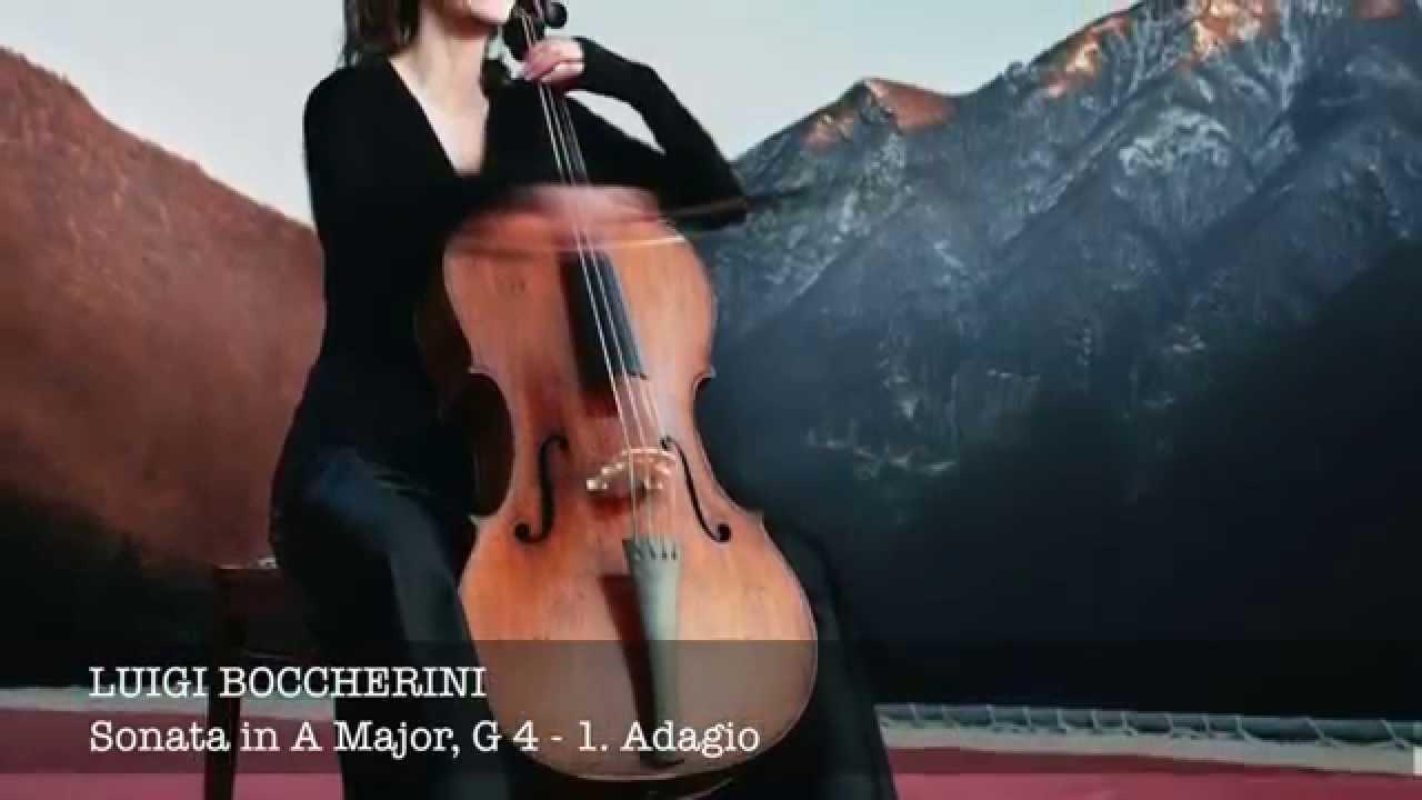 6 Six Concertos for 2 Celli /& 2 Violins  Vol Cirri