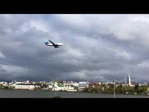 Reykjavik Pond