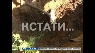 Части тел разных людей обнаружены на берегу озера в Заволжье