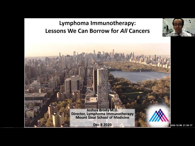 Lymphoma Immunotherapy: Lessons We Can Borrow for All Cancers