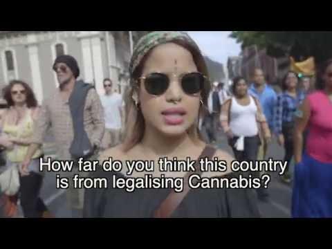 Cape Town cannabis walk 2016 official video