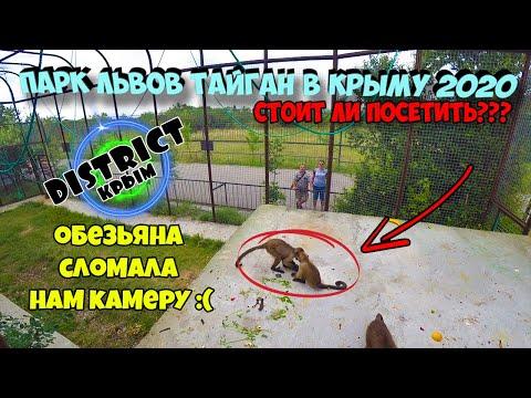 Вопрос: Почему в в Крыму хотят закрыть парк львов Тайган?