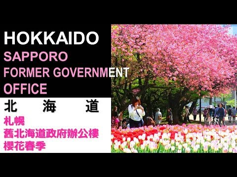 HOKKAIDO X / SAPPORO - FORMER HOKKAIDO GOVERNMENT OFFICE - SPRING / 北海道 X / 札幌 - 舊北海道政府辦公樓 - 櫻花春季