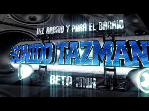 Presentacion Sonido Tazmania