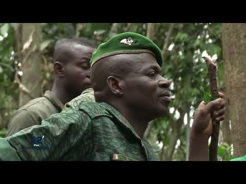 52 mn pour comprendre la SODEFOR - Société de développement des forêts