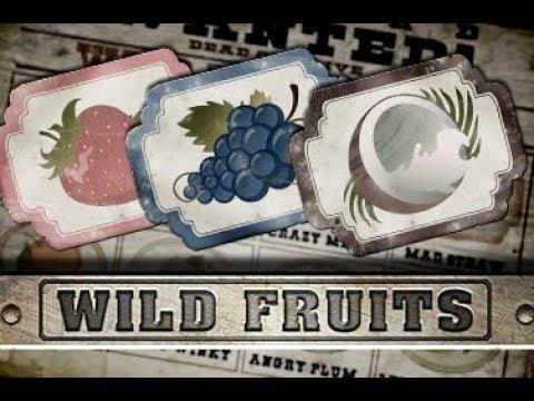 Wild Fruits Slot Machine By Endorphina ✅ Bonus Feature Gameplay ⏩ DeluxeCasinoBonus