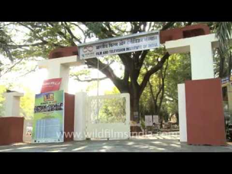 Chandan Malhotra PHONE Number Video 7050948823