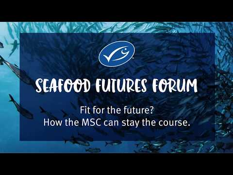 MSC Seafood Futures Forum 2018 | Seafood Expo Global, Brussels