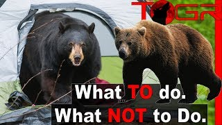 How to Backpack in Bear Country - How to Handle and Prevent Bear Encounters