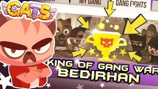 King of Gang War | Cats Game Crash Arena Turbo Stars: 10 Gang Fights Winner
