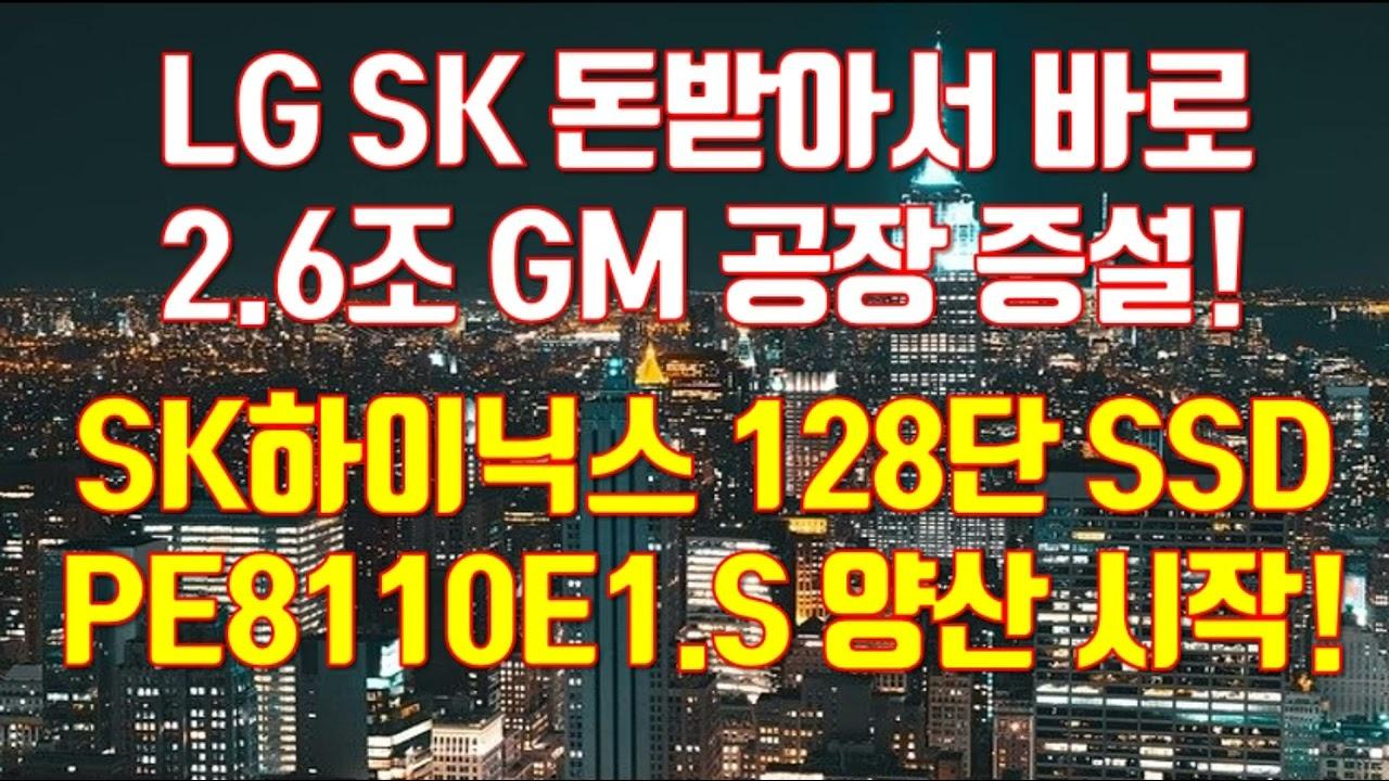 LG SK 돈받아서 바로 2.6조 GM 공장 증설! SK하이닉스 128단 SSD PE8110E1.S 양산 시작!