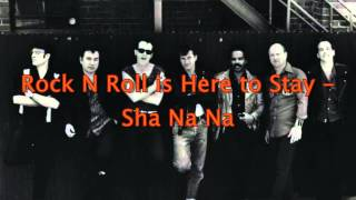 Rock N Roll is Here to Stay - Sha Na Na HD
