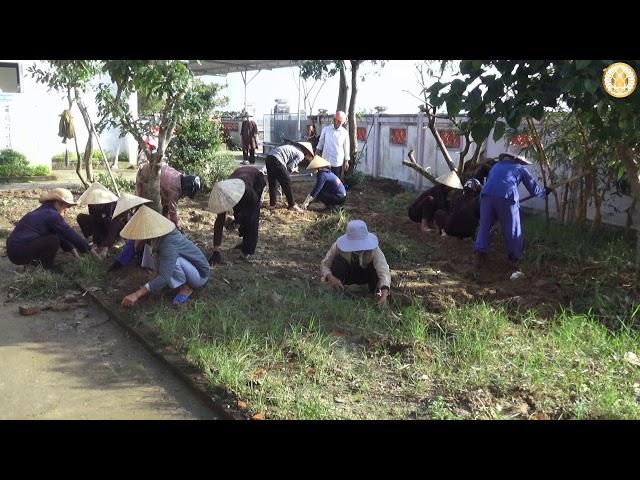 Đạo tràng chùa Hoằng Phúc lao động công quả ngày 27/11/2020 | CHÙA HOẰNG PHÚC