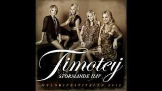 Timoteij - Stormande Hav (MF 2012 | Karaoke)