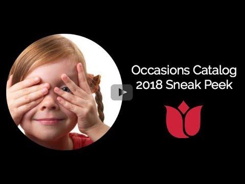 Occasions Catalog 2018 Sneak Peek