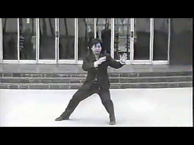 Chen Xiao Xing - Tai Chi style Chen Xinjia Yilu 1986 [陈氏太极拳新架 Taijiquan style Chen]