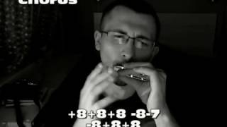 �������� ���� The Show Must Go On (Queen) harmonica tabs ������
