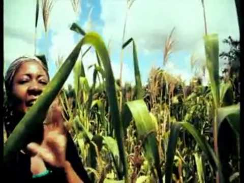 Fa'Rose - Nyarara OFFICIAL VIDEO