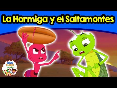 La Hormiga y el Saltamontes - Cuentos Infantiles en Español   Cuentos de Hadas   Cuentos para Dormir
