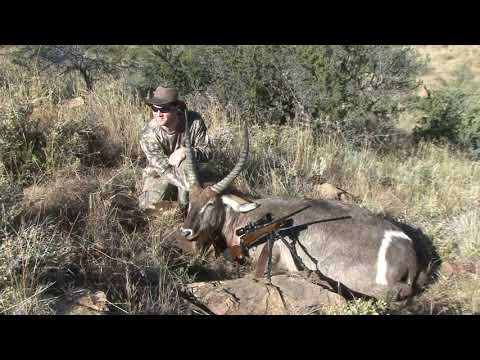 South African Hunting Safari 2018