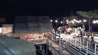 Download Malam Mingguan, Di Parepare Cocok Ke Teras Empang