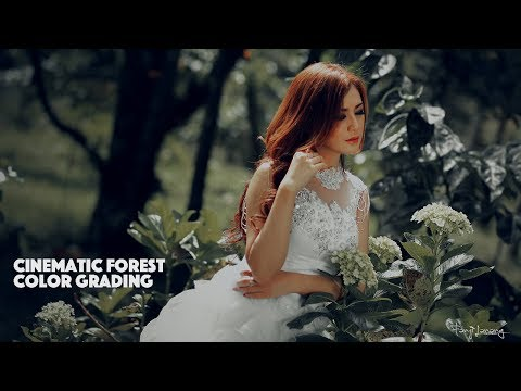Forest Effect Cinematic Color Grading Photoshop Tutorial thumbnail