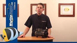 ReeFlo Sword Tail External Water Pump - Product Highlights