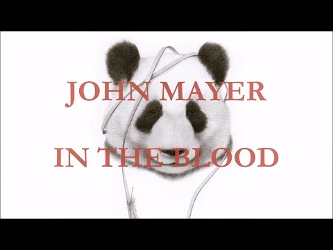 John Mayer - In the Blood (lyrics)