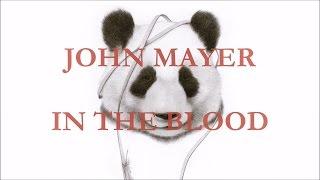John Mayer - In the Blood (lyrics)