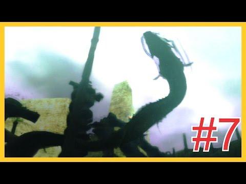 Shadow of the Colossus  #7 Gigante (PT- de Angola)
