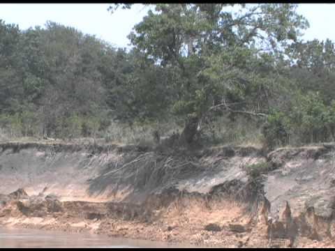 River reborn - Texas A&M AgriLife efforts on the Trinity