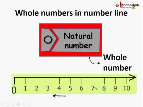 पूर्ण संख्या – भाग 1 – What is whole number