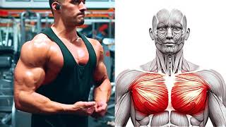 BEST CHEST EXERCISES for Building a Broad, STRONG UPPER BODY