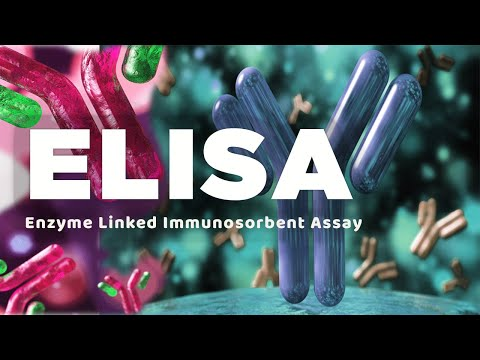 radioimmunoassay ria and enzyme linked immunosorbent assay elisa essay The enzyme-linked immunosorbent assay, better known as elisa, exploits this antigen-antibody specificity to detect and measure, with the help of enzymes, the presence of proteins in samples of unknown composition and concentrations.