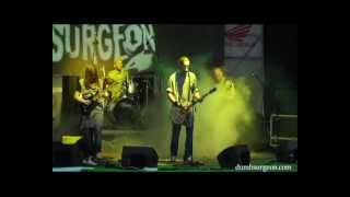 Dumb Surgeon -  Where is my money? (live from Tarasova Gora fest)