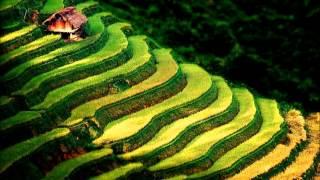 Nụ Cười Sơn Cước - Cao Minh hát