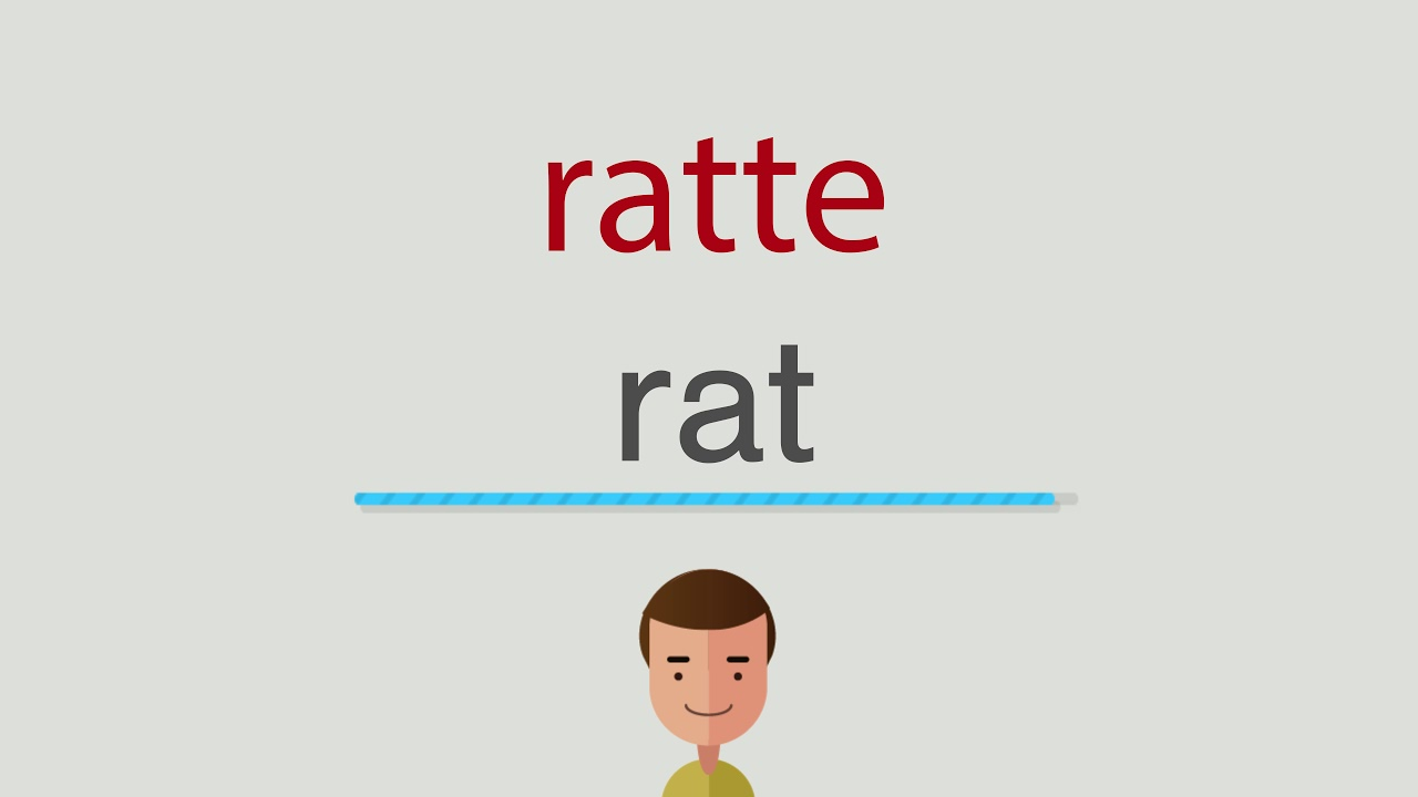 Ratte Englisch