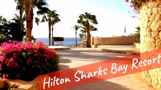 Hilton Sharks Bay 4 Sharm el Sheikh Обед и проход к морю Egypt 2021