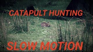 Catapult / Slingshot Hunting in slow motion