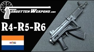 South African Galils: The R4, R5, R6, and LM Series
