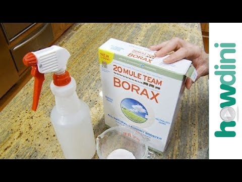 How To Kill Mold With Borax Youtube