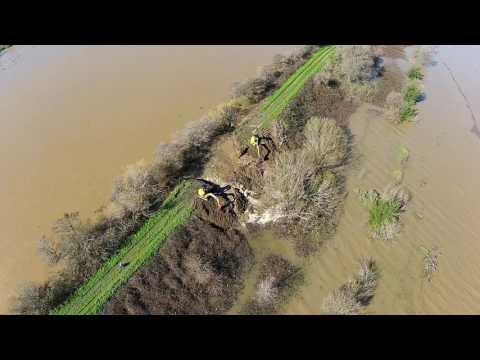 Levee Breach Converts California Delta Island to Floodplain - McCormack-Williamson Tract